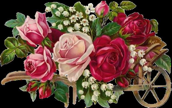 brouette de roses