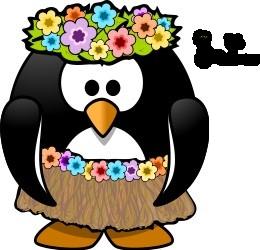 Pingouin haitienne